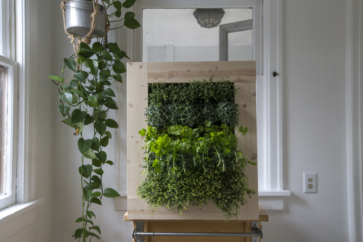 Herb Wall How To Make A Herb Wall Planter Home Improvement