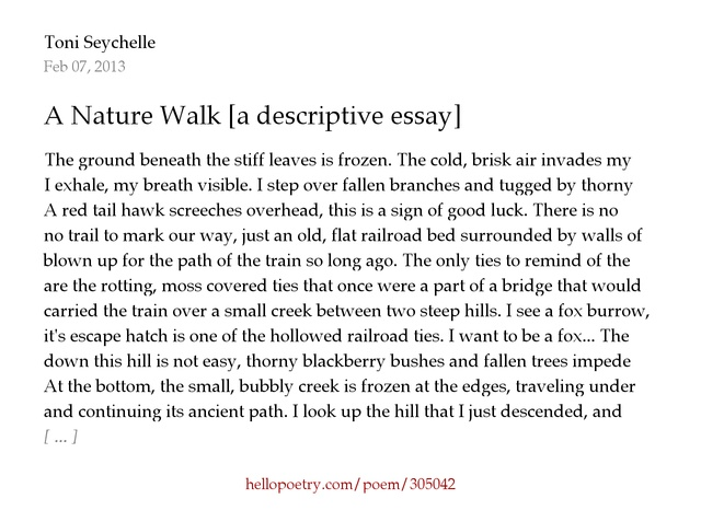 decriptive essay a nature walk a descriptive essay by toni seychelle
