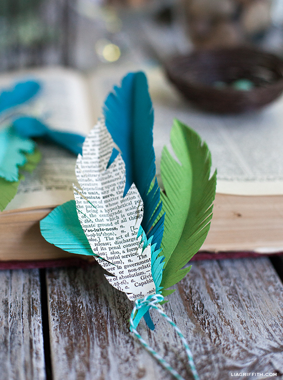 Paper Feather Template - Lia Griffith