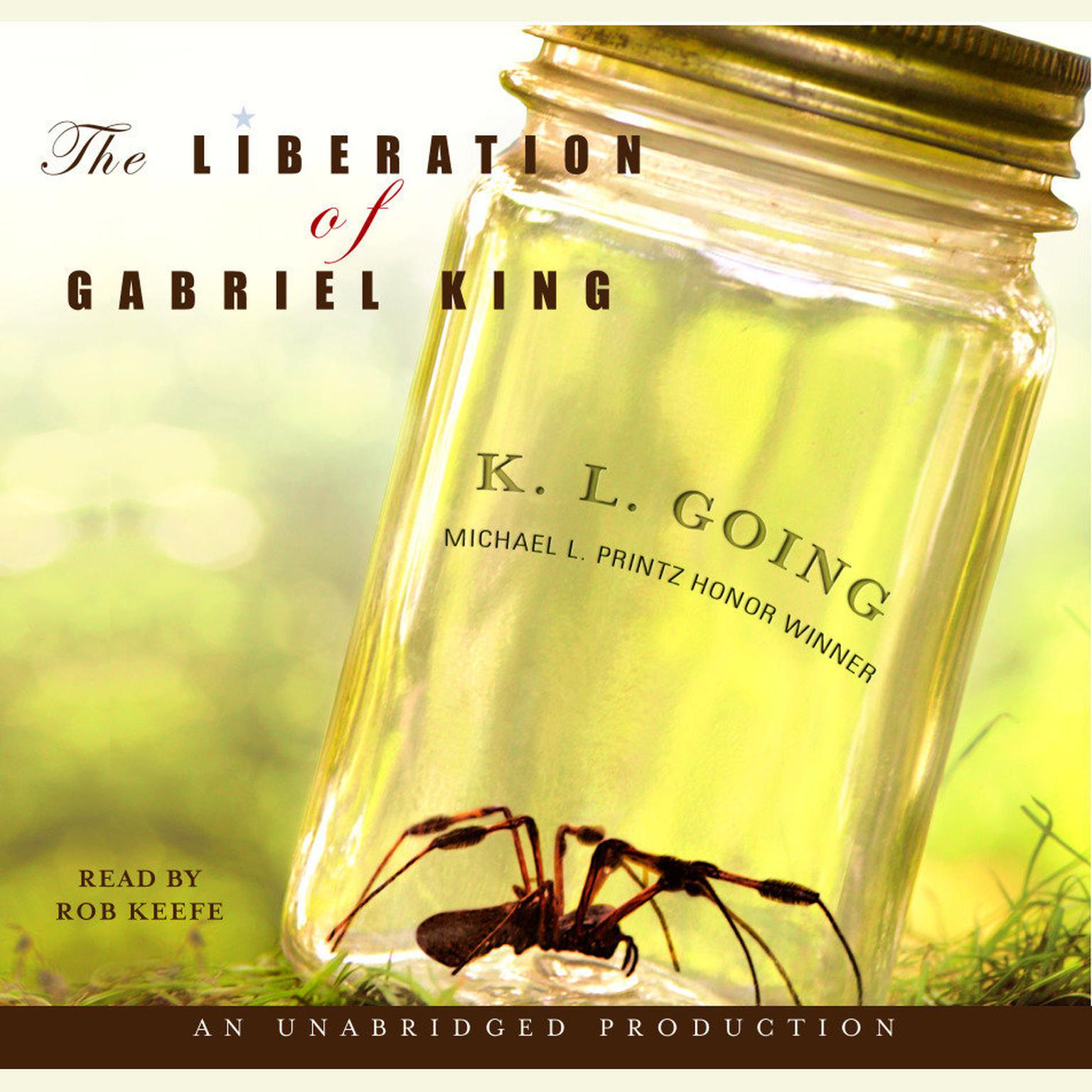 resume now resume now reviews resume now cv writing download the liberation of gabriel king audiobook