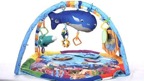 Baby Einstein Baby Neptune Ocean Adventure Gym Saanich