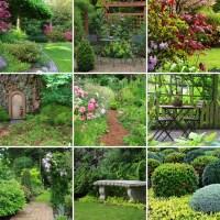 29 Serene Garden Patio Ideas and Designs (Picture Gallery)