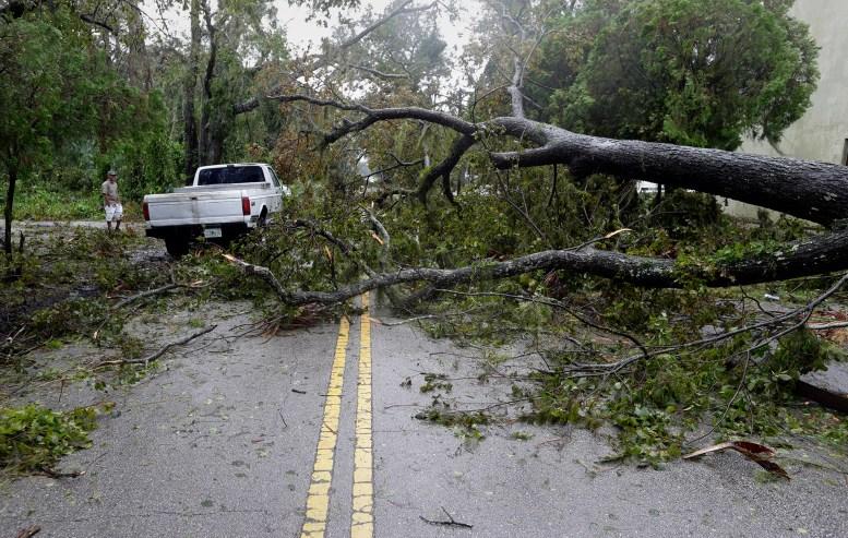 Una camioneta intenta avanzar entre los árboles caídos por efecto de los fuertes vientos en Daytona Beach (AP Photo/Eric Gay)