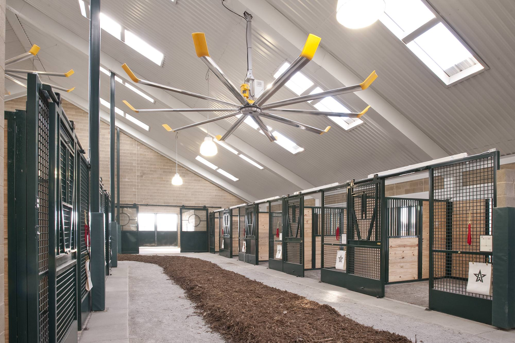 Big Ceiling Fans Australia Large Ceiling Fans For Stables Riding Arenas And Horse