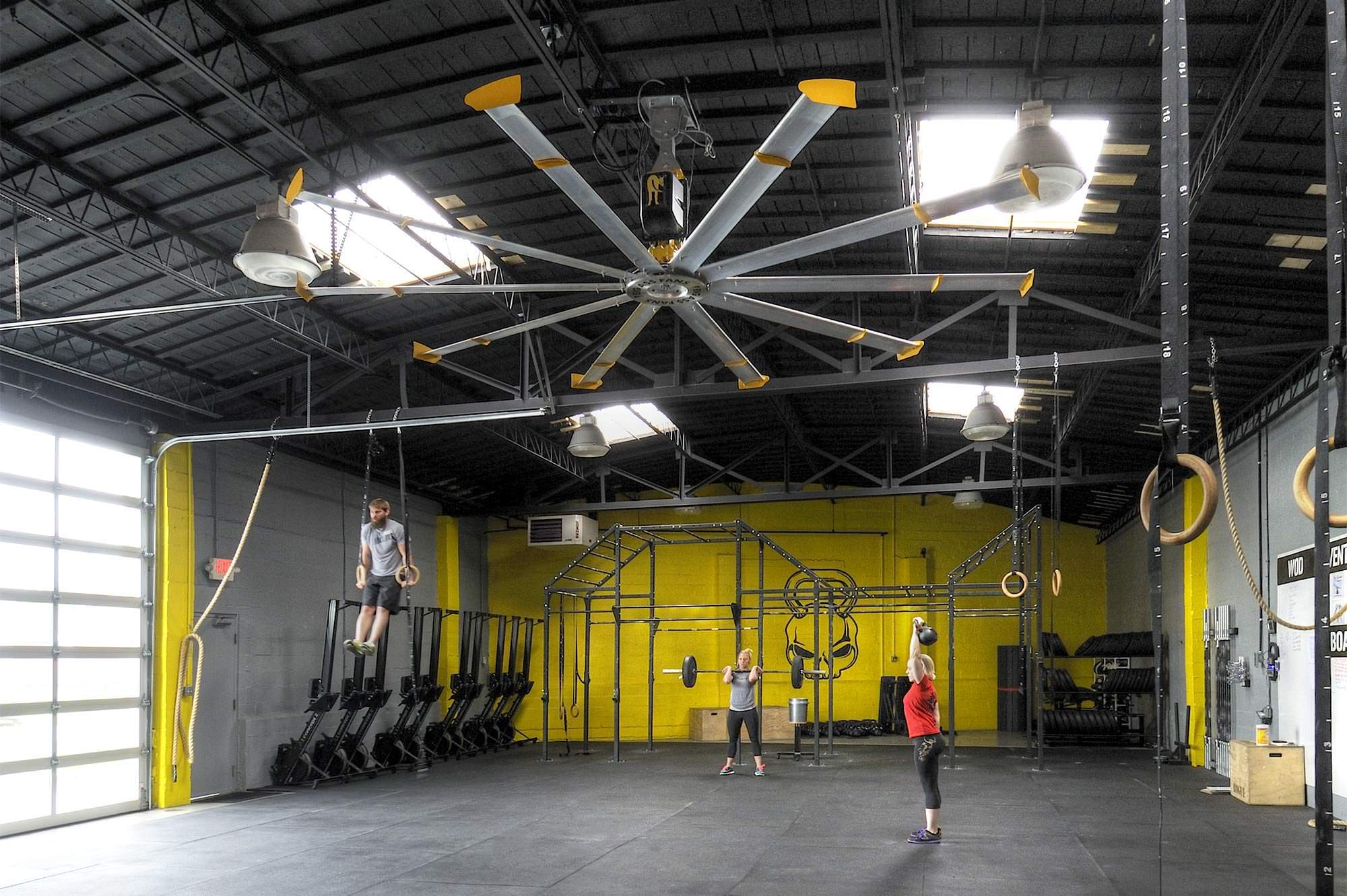 Gym Ceiling Fans Are Gym Essentials If They Are Big Ass Fans