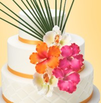 Wedding Cakes With More Personality | DecoPac