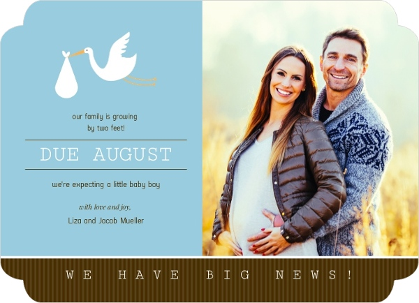 Blue and Brown Stork Pregnancy Announcement Card Pregnancy