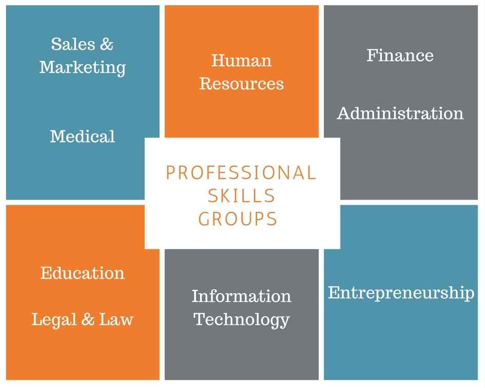 NETEXPAT COMMUNITY PROFESSIONAL SKILLS GROUPS
