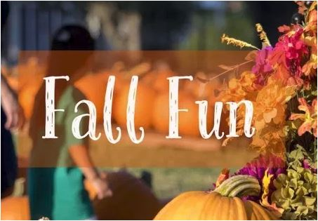 Carve Out Fall Fun at Brookfield Day on Saturday, October 13