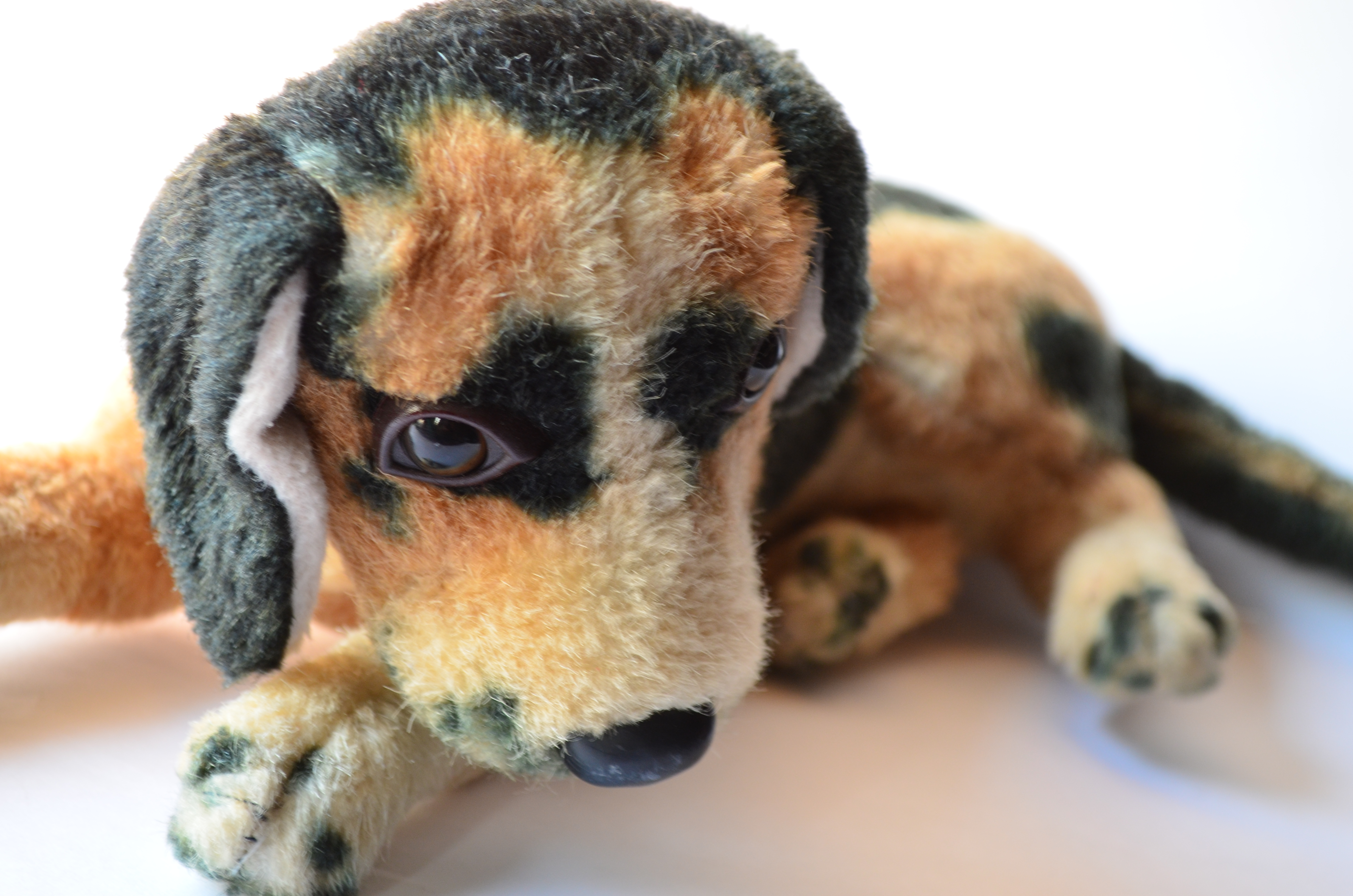 Soft Toy Dog Sad Dog Soft Toy Public Domain Pictures
