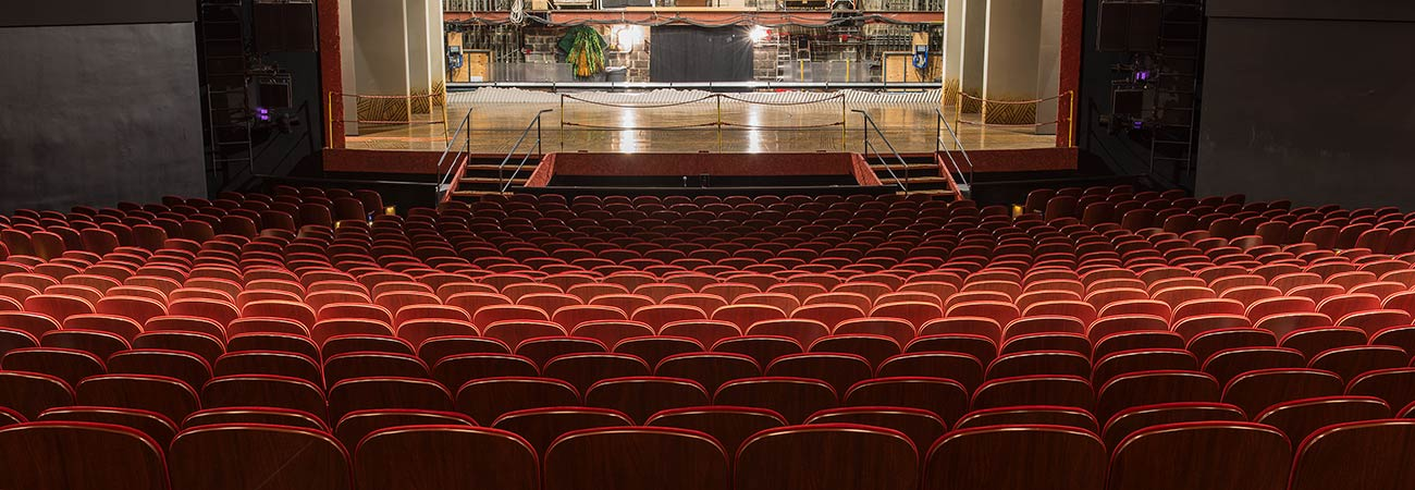 Minskoff Theatre Fixed Audience Seating By Irwin Seating