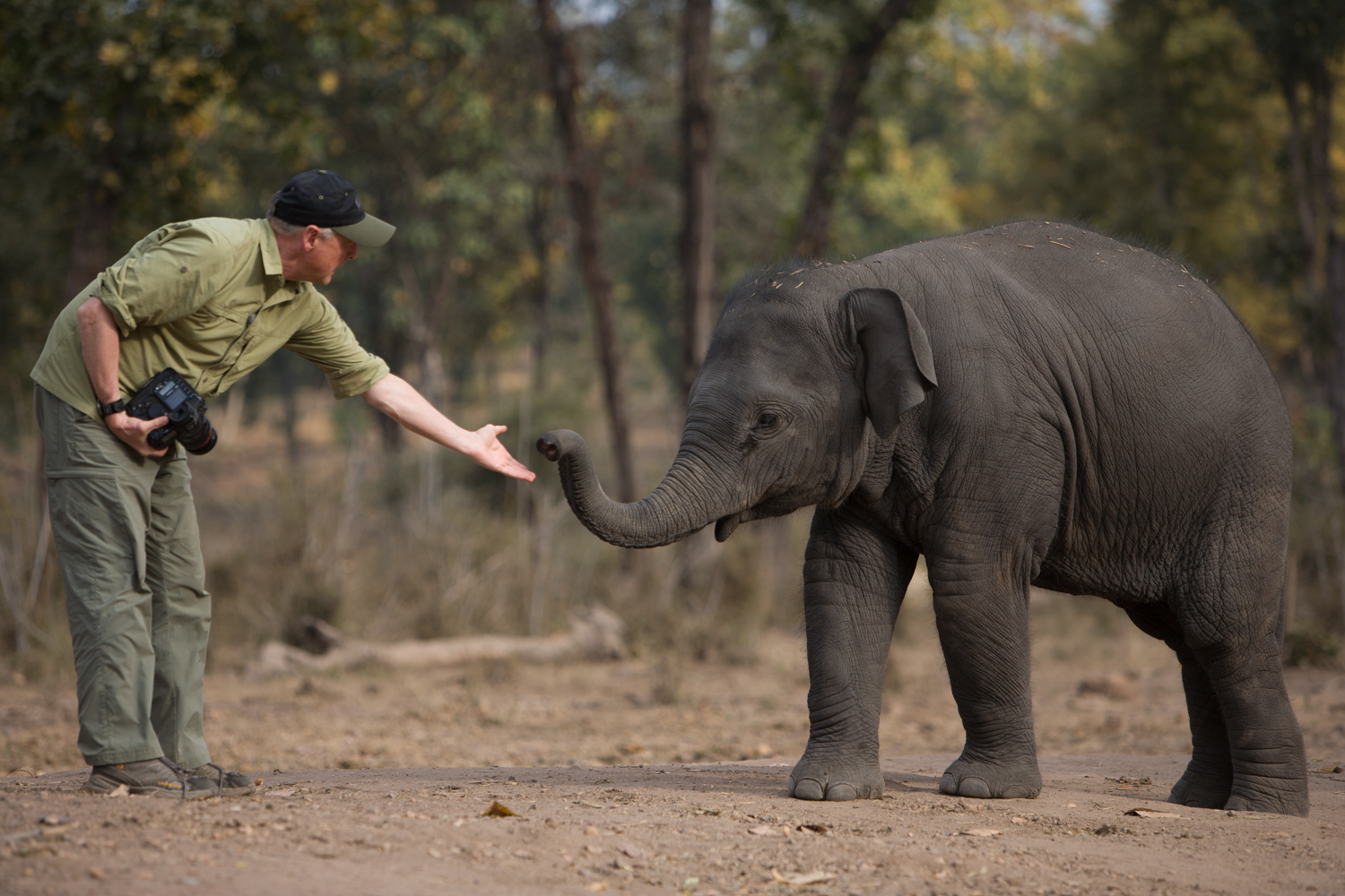 Art Wolfe Photo Tours Art Wolfe Reaching Out To Baby Elephant During Travels To The Edge