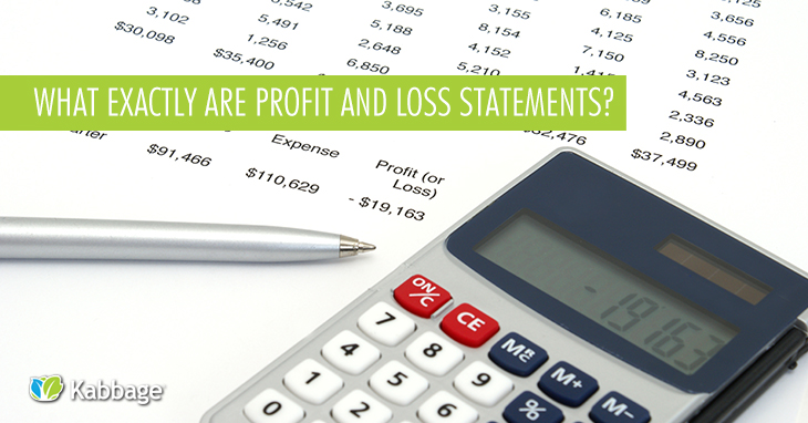 What Exactly are Profit and Loss Statements?