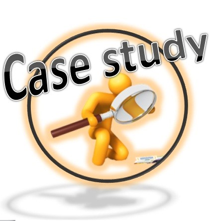 Guidelines for Case Analyses and Class Discussions - SERQ 710 - Case Analysis