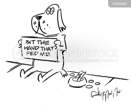 dog bite image stock