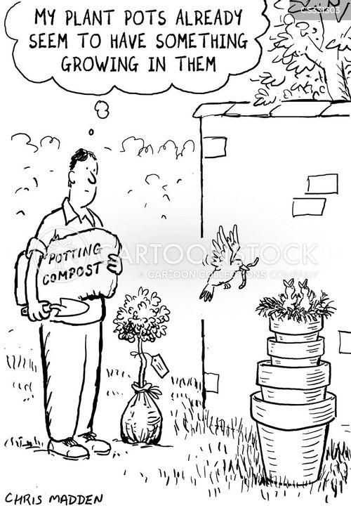 plants watering watcher