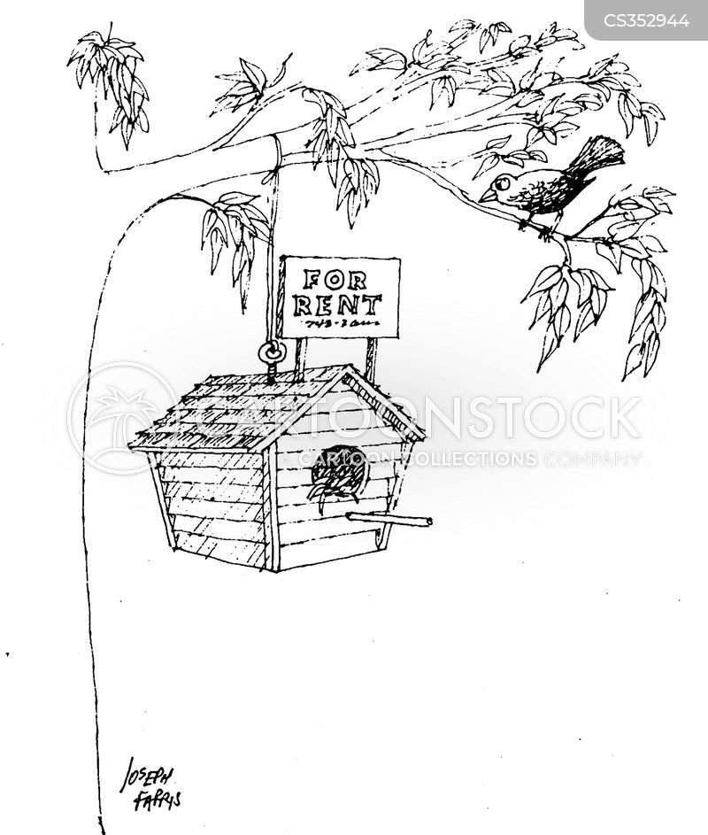 Rent Renting Bird Boxes Cartoons And Comics - Funny Pictures From