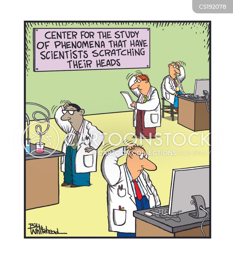 Research Paper Cartoons and Comics - funny pictures from CartoonStock
