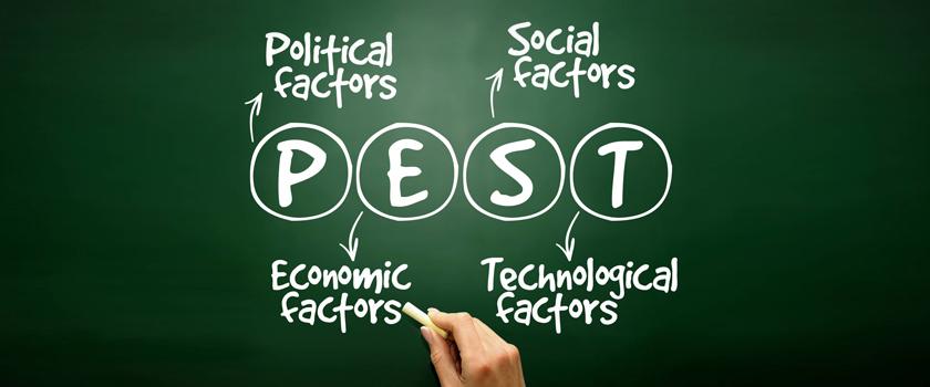 Analyze Your Business Environment; PEST Analysis Mars Translation