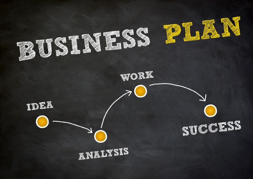 Business Plan Template for an Established Business - business plan elements