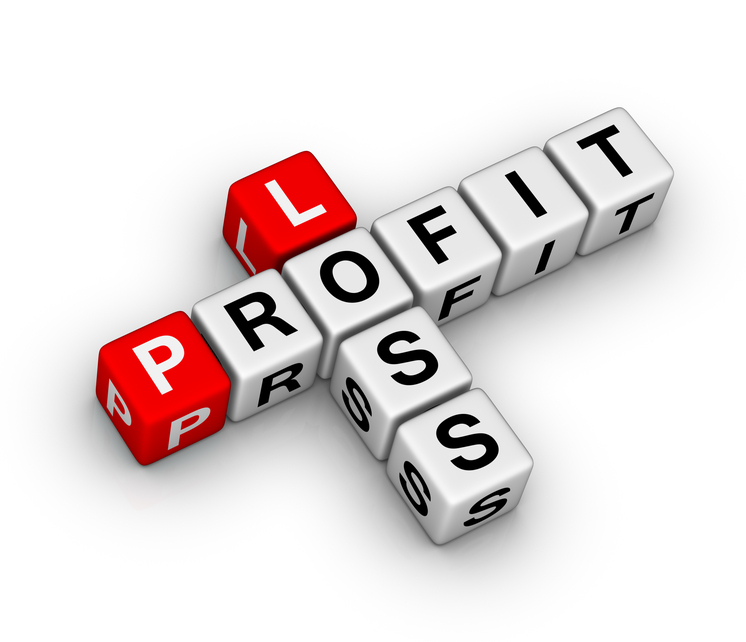 12-Month Profit and Loss Projection SCORE - profit and lost statement