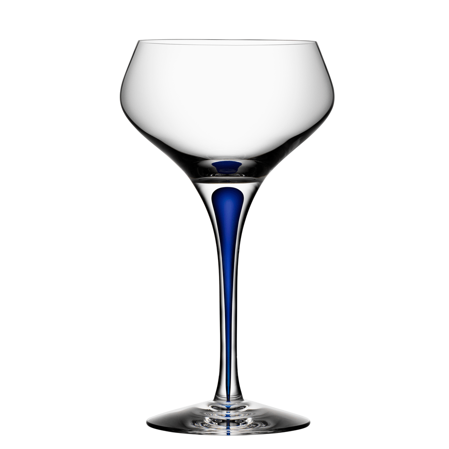 Champagne Coupe Intermezzo Blue Champagne Coupe