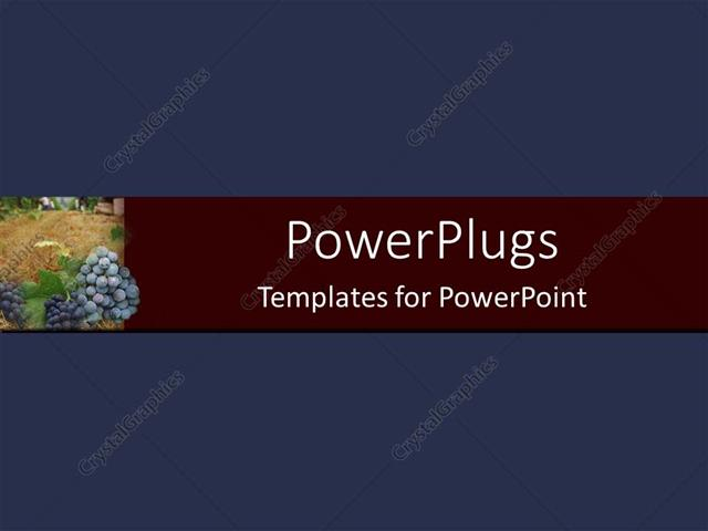 PowerPoint Template Navy background with burgundy banner and grapes