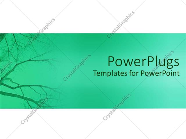 PowerPoint Template Plane green hue background with dried empty