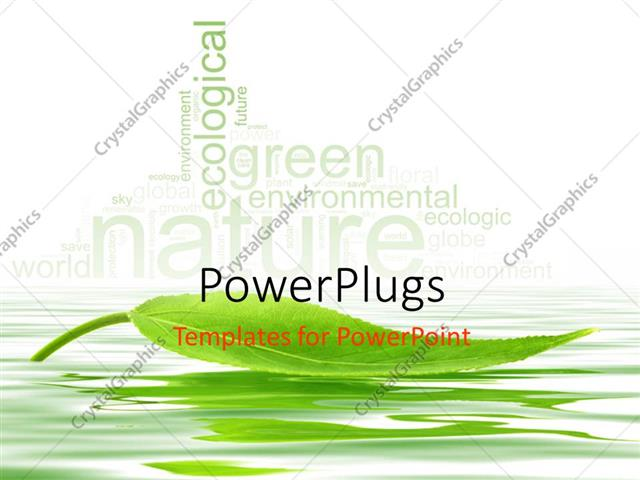 PowerPoint Template Single green leaf floating over the water with