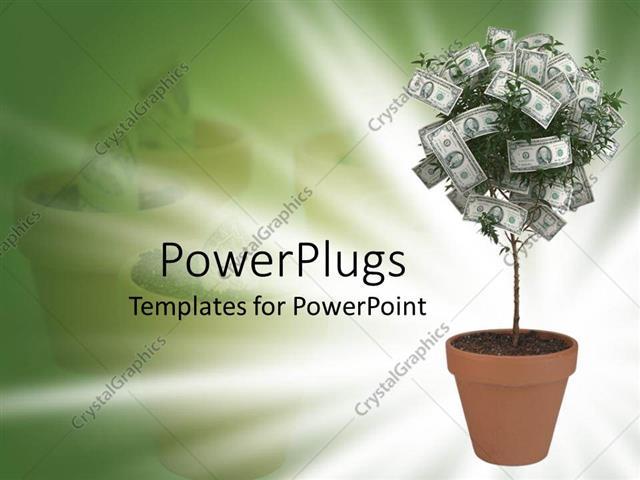 PowerPoint Template Small money tree in terra cotta pot on green