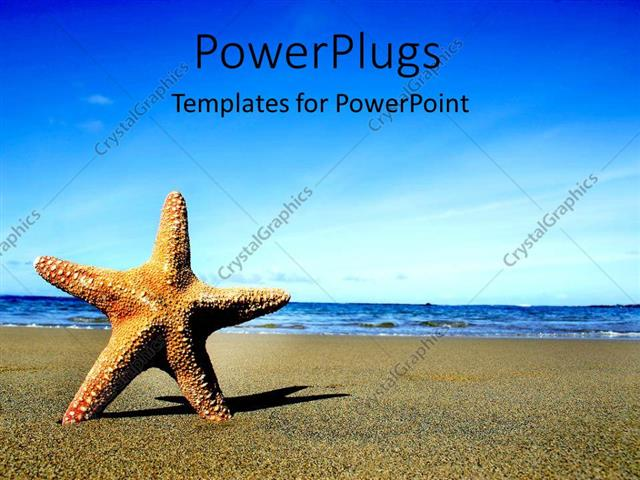 PowerPoint Template Starfish on sandy beach and blue sea with blue