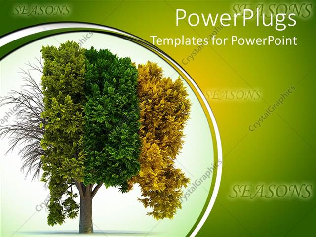 PowerPoint Template A tree depicting the effect of Four different
