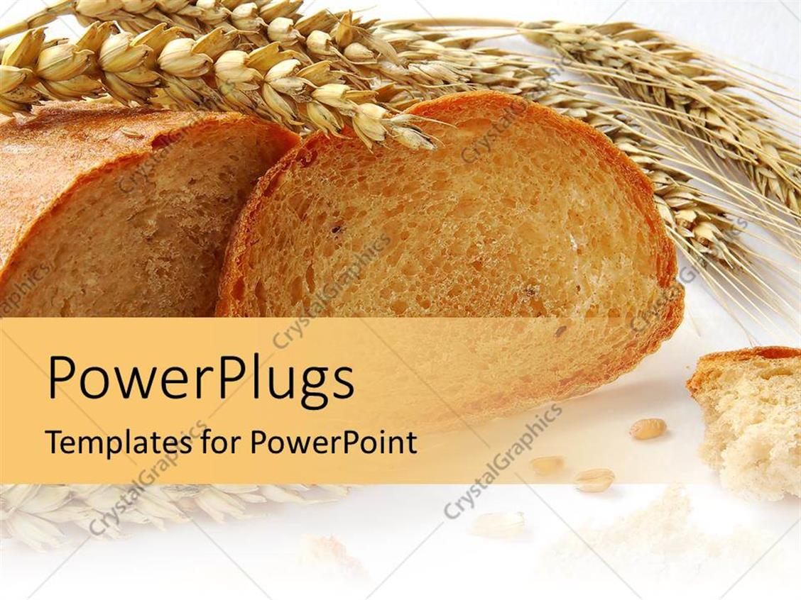free chocolate grains powerpoint template