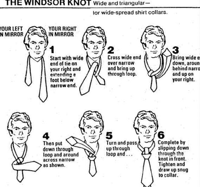 double windsor knot diagram