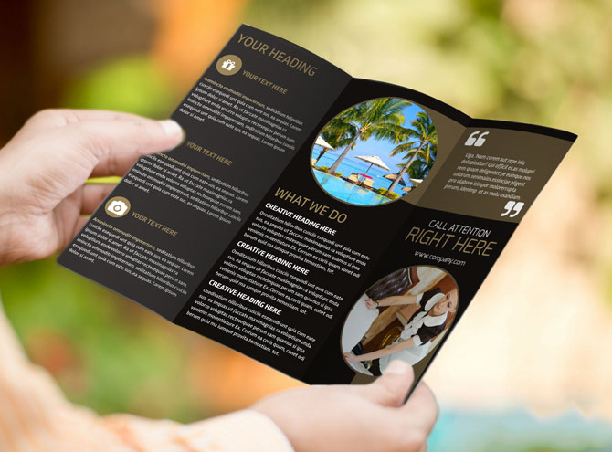 MyCreativeShop Easily Create Awesome Brochures, Flyers  More