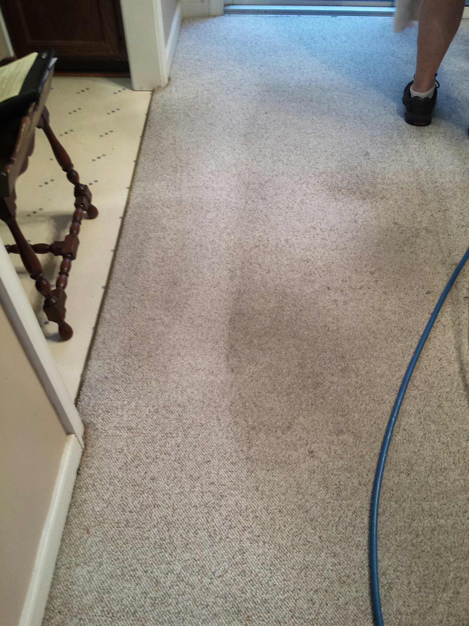 Carpet Rug Upholstery Cleaning Ashland Va Chem Dry