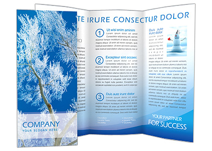 Winter Brochure Template  Design ID 0000000556 - SmileTemplates