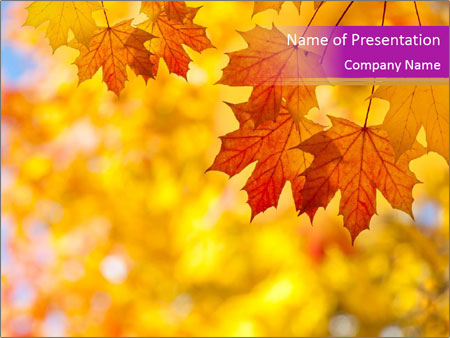 Vibrant Yellow Autumn PowerPoint Template, Backgrounds  Google - autumn powerpoint templates