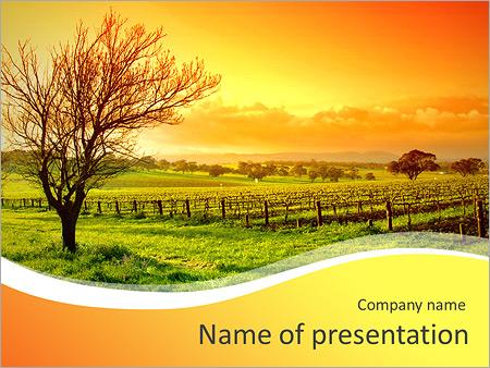 Autumn - PowerPoint Template - SmileTemplates - autumn powerpoint templates