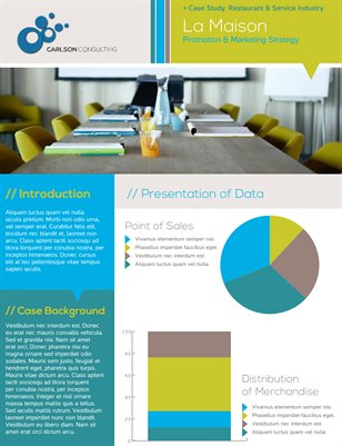 Templates - Flyers Business Customer Case Study Flyer MagCloud