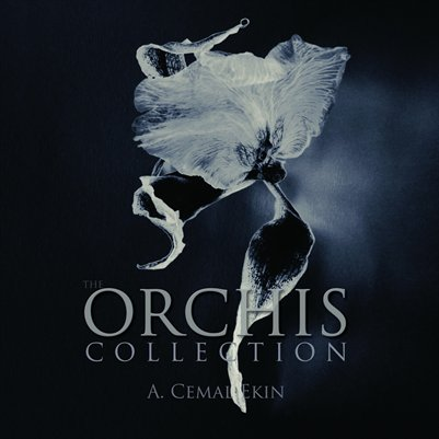 The Orchis Collection