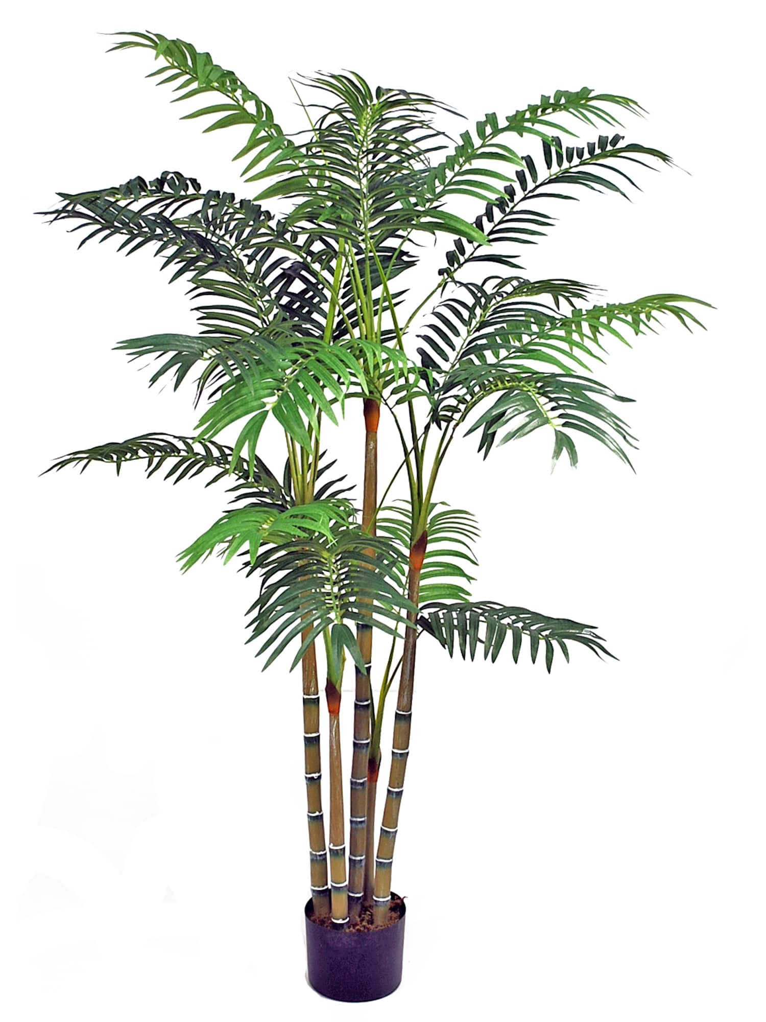 Artificial Plants Hire Artificial Heliconia Palm Plant Hire Supazaar