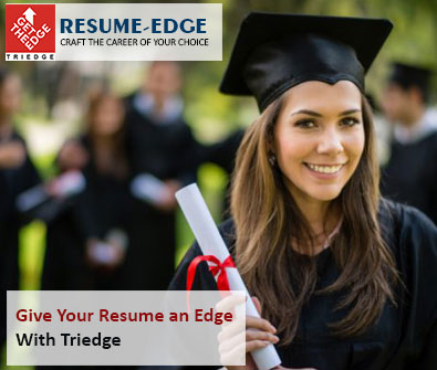 TriEdge Expert Resume Writing Services for Freshers  Professionals