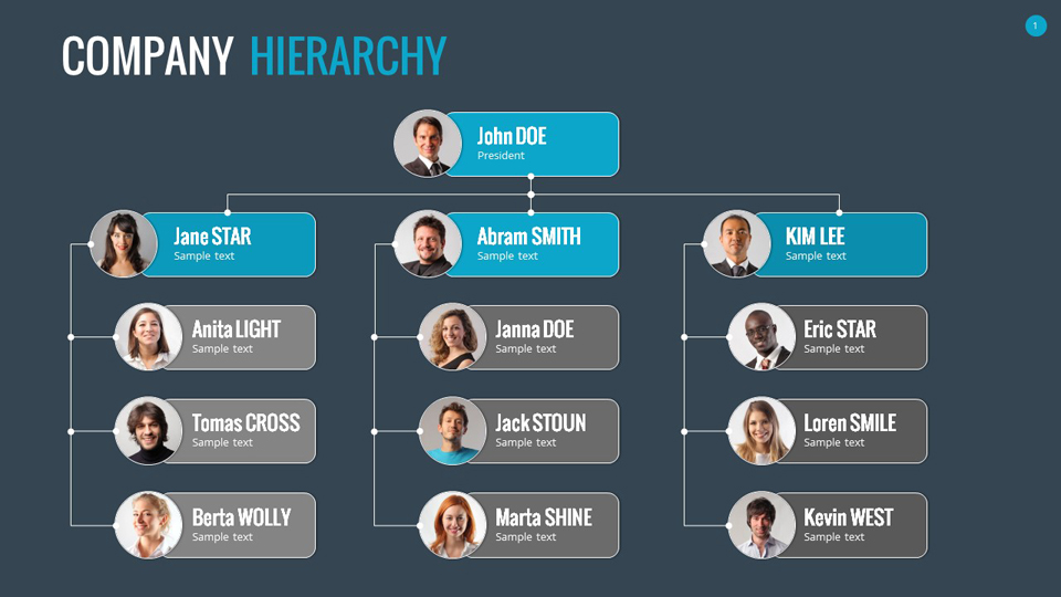 Organizational Chart and Hierarchy Template by SanaNik GraphicRiver - company chart template