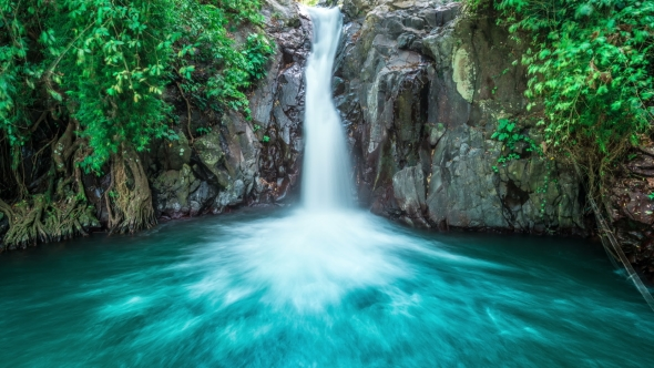 Fall Wallpaper 4d Tropical Waterfall Flows Through Dense Jungle Forest And