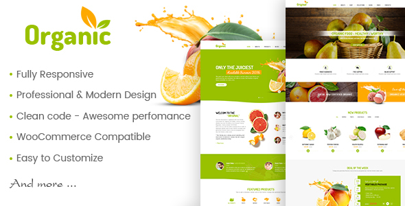 AmyOrganic - Organic and Healthy Theme for WordPress by amytheme