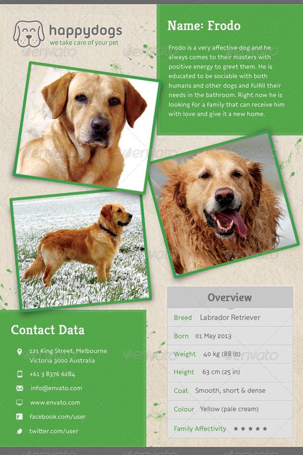 lost pet template – Lost Dog Poster Template