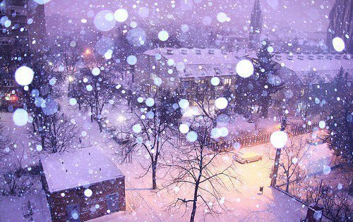 Alone Girl Wallpaper With Quotes Nature Pretty Snow Street Weather Image 357532 On