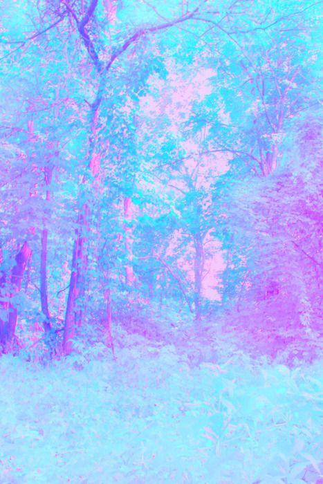 Cute Pink Glitter Wallpapers Blue Bright Forest Light Pastel Image 422835 On