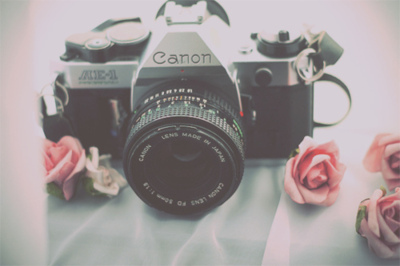 Hug Boy And Girl Wallpaper Camera Canon Cute Flowers Photo Image 427321 On